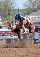 Helix Rodeo 09: Roany by saudimack