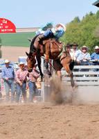 Helix Rodeo 09: Bay Roan by saudimack