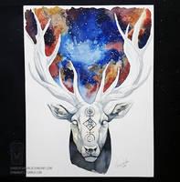 Cosmos by ShadeofShinon