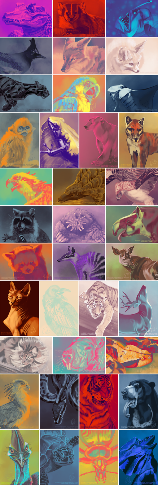 More colour palette studies by ShadeofShinon