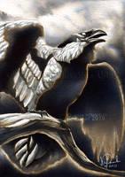 Old Gods: Day 8 - Raven