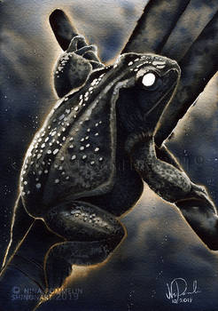 Old Gods: Day 11 - Frog