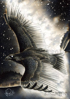 Old Gods: Day 14 - Eagle