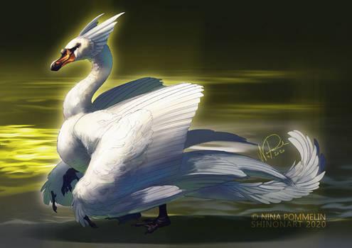 Swan Dragon