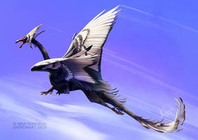 Black Swan Dragon