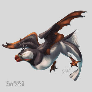 Smaugust: Puffin