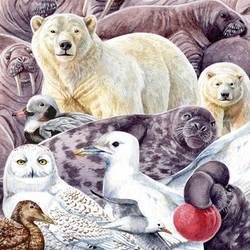 Animals of the North Pole