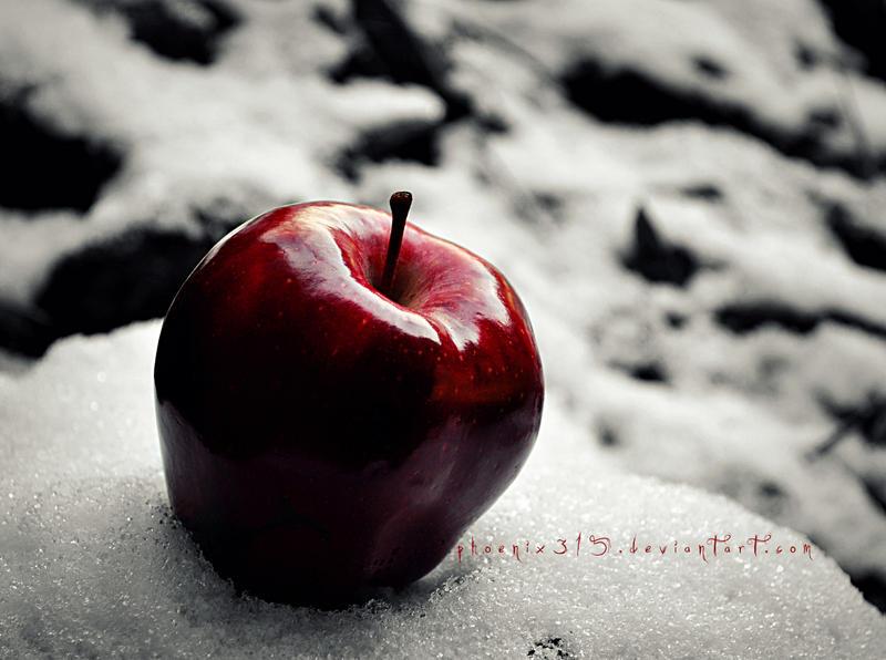 Apple Snow — Rezepte Suchen
