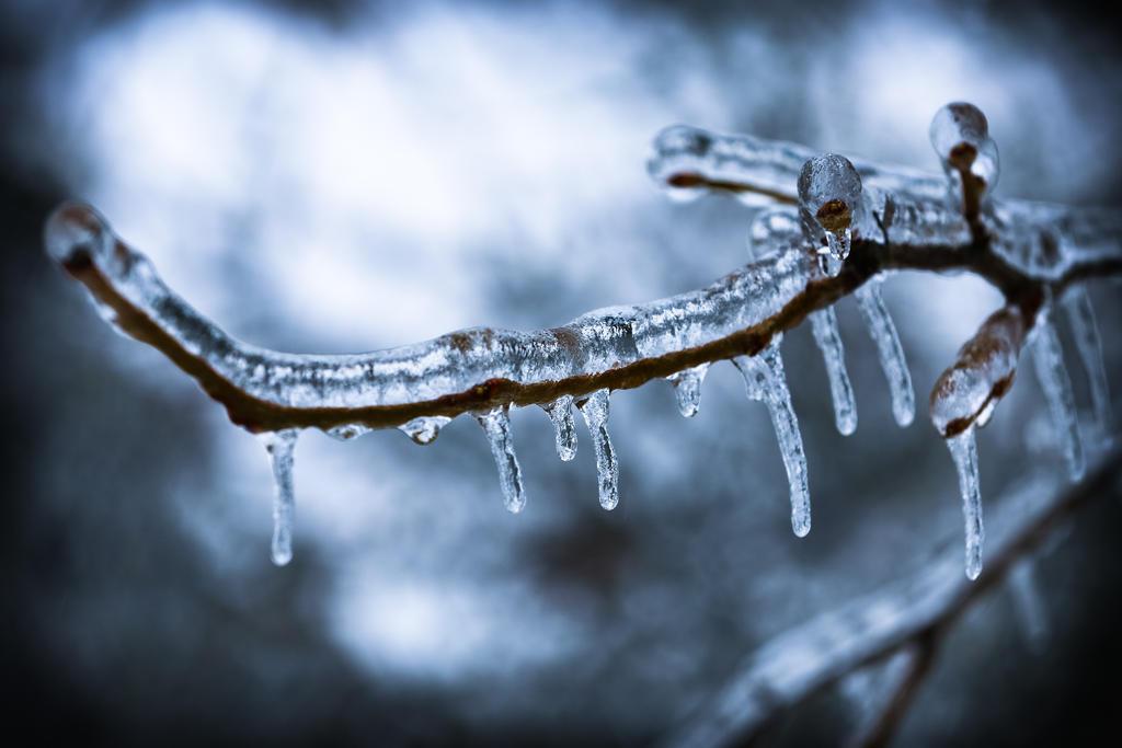 Icepocalypse by wonderflex