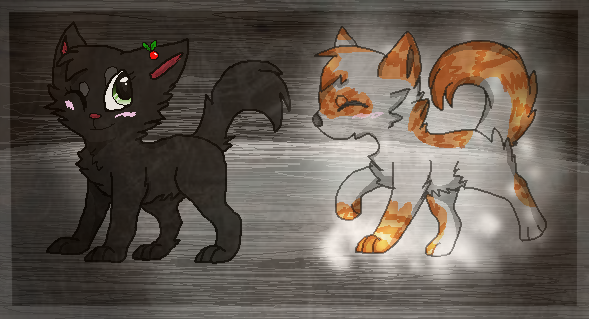 Warrior Cats Hollyleaf And Fallen Leaves Kits Download