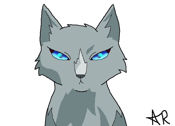 How To Draw Bluestar Like Warrior Cats Sss