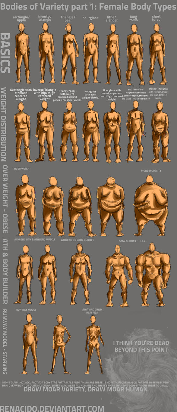 Bodies of Variety pt 1: Female body types by Renacido
