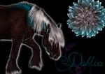 118 Black Dahlia