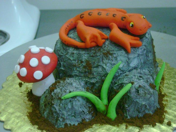 Salamander Cake - Judith Walli, Judith und die Torten - Cake by ...