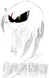 Ravager The Echidna by DarkShadicX