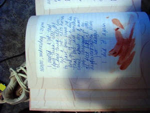 Suicide via Diary