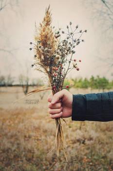 Fall in tenderness