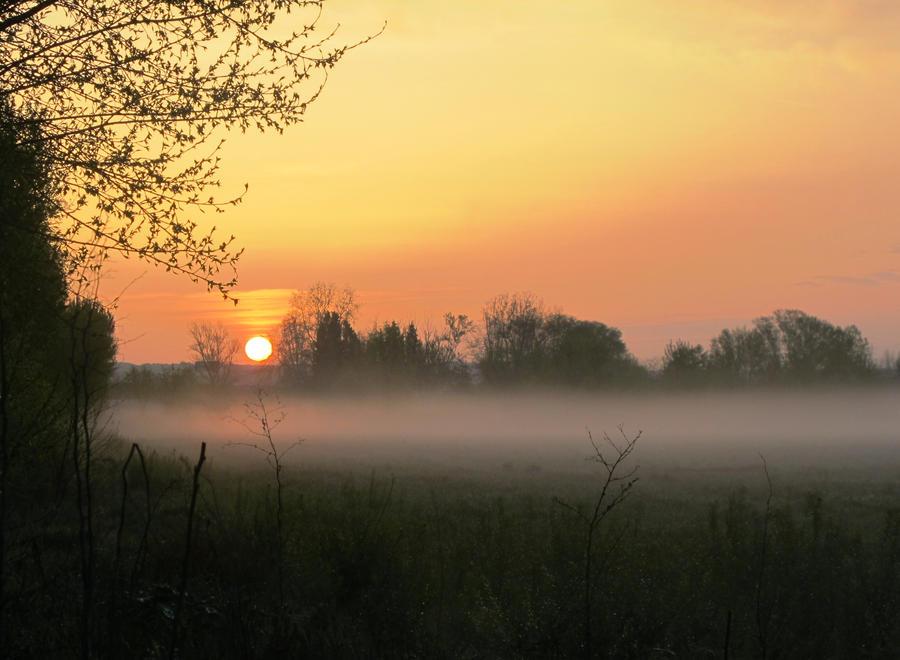 April's fog by maximila