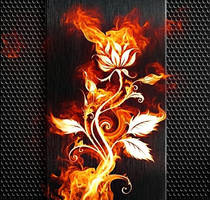Rose Fire by poisen2014