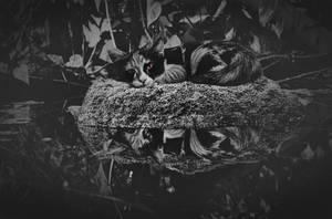 sad and empty by poisen2014