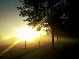 Autumn Morning by poisen2014
