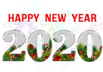 Happy New Year 2020 by poisen2014