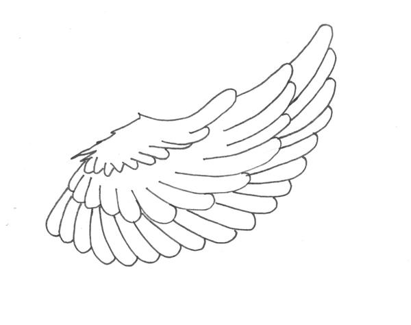 Simple Angel Wing Tattoos Design Angel Wing by Tainted Tattoos
