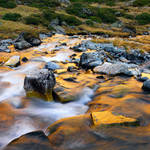 water of gold