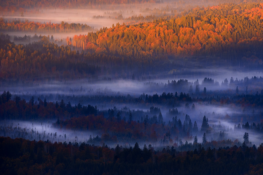 fog in the valley by MartinAmm