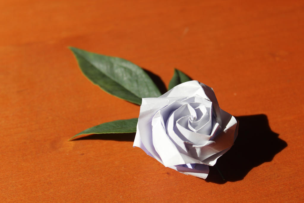 Origami Rose by amelakohpikacha