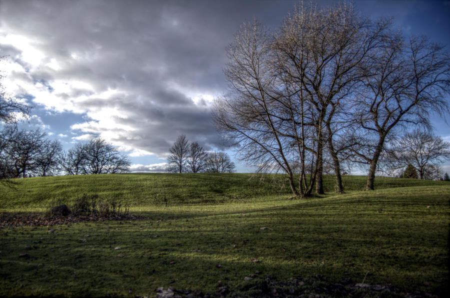 Trees and Clouds HDR by johnwaymont