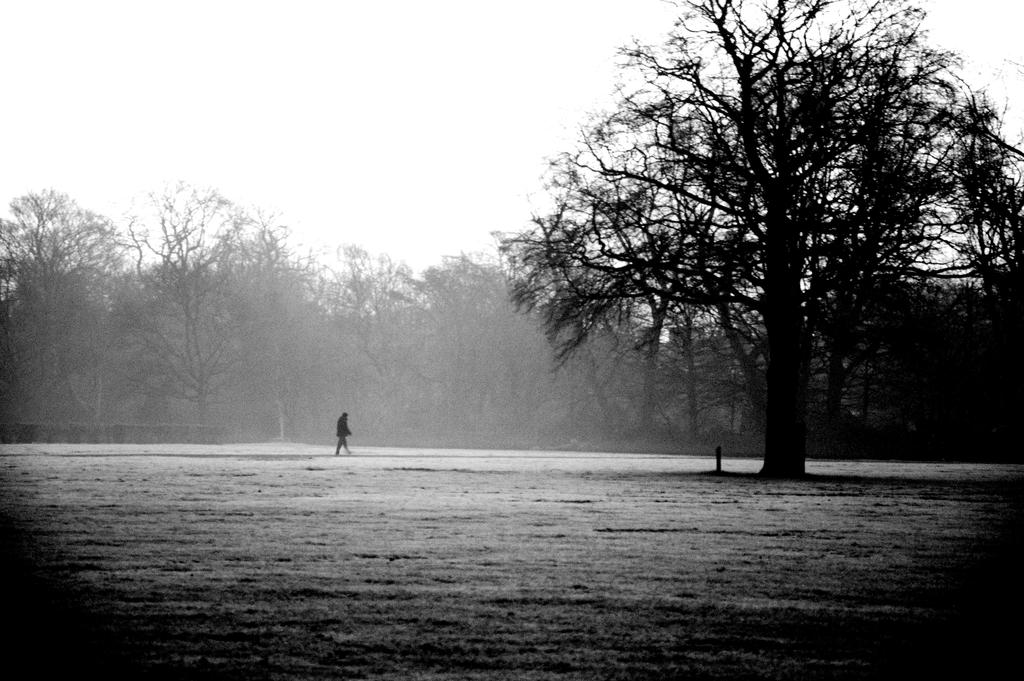A Long Walk by johnwaymont