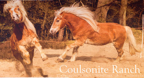 Coulsonite Ranch by Coulsonite
