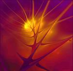 sunset -APO-fractal-walpaper