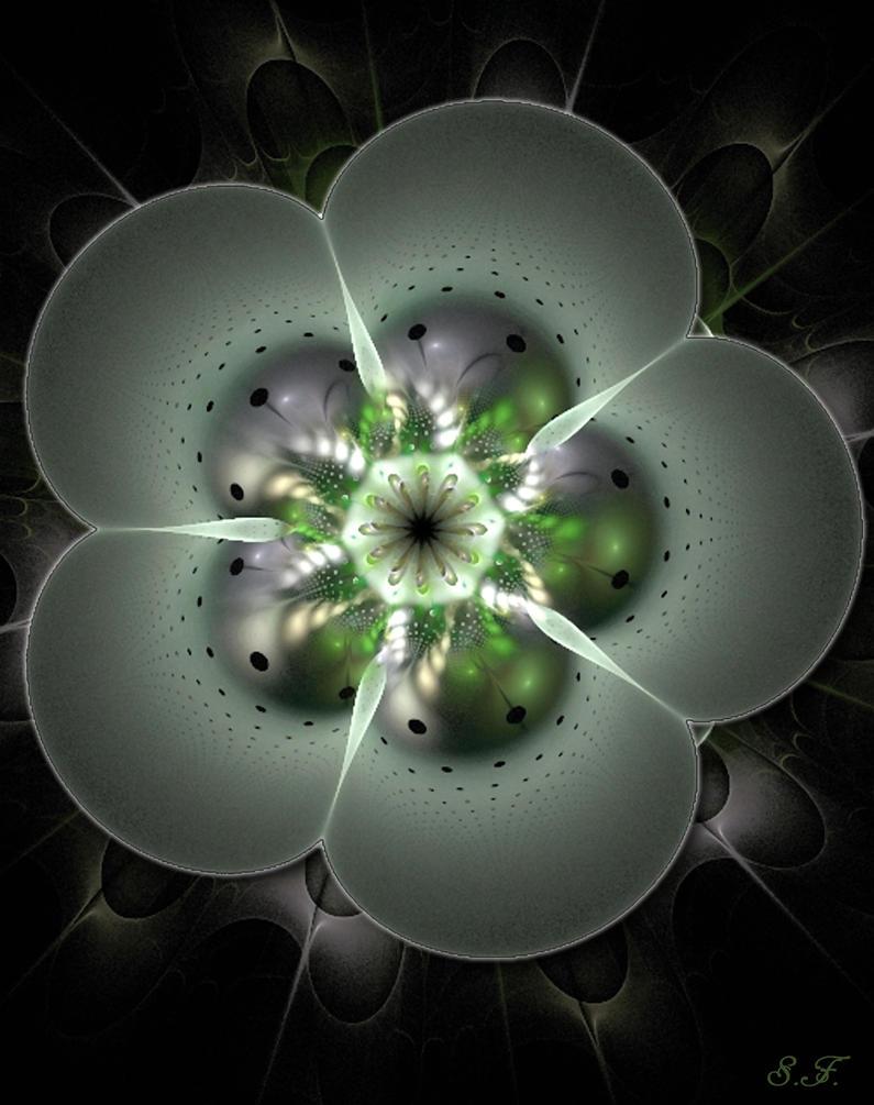 plastic flower-apo by sonafoitova