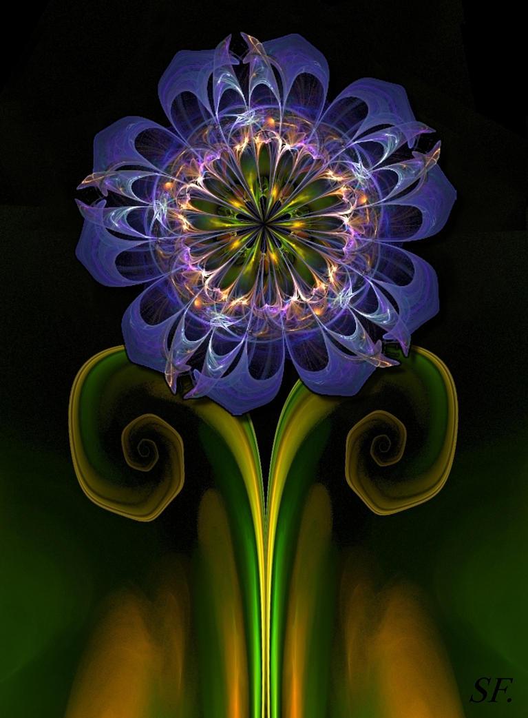 sun flower-apo by sonafoitova