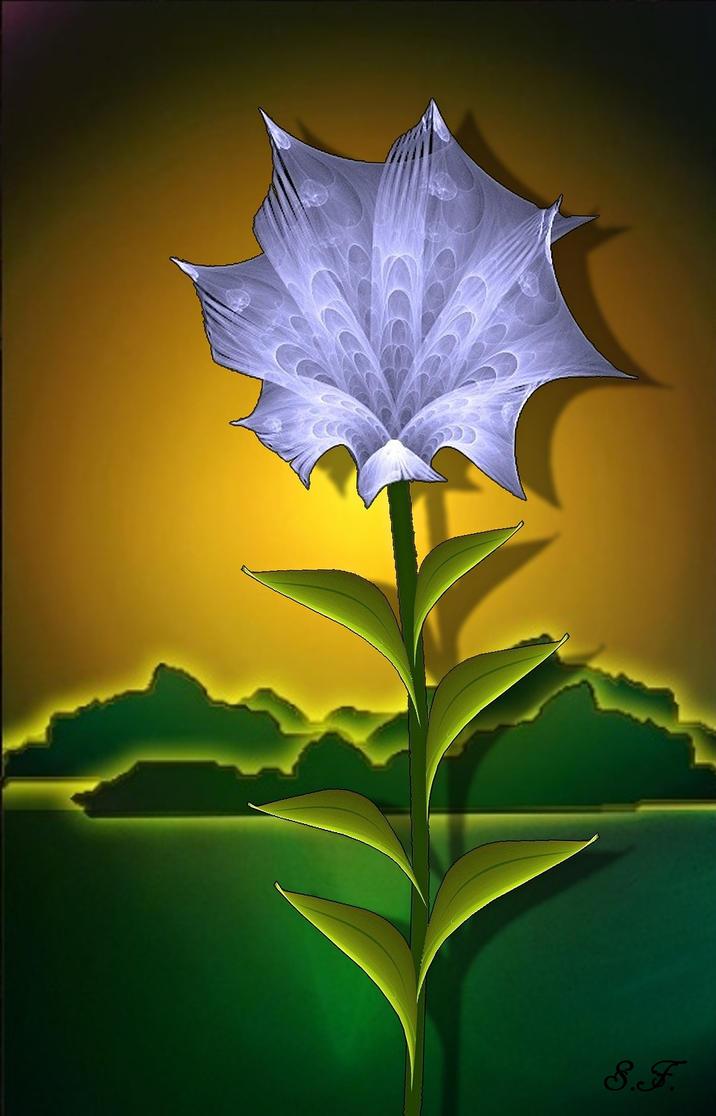 lili in a window by sonafoitova