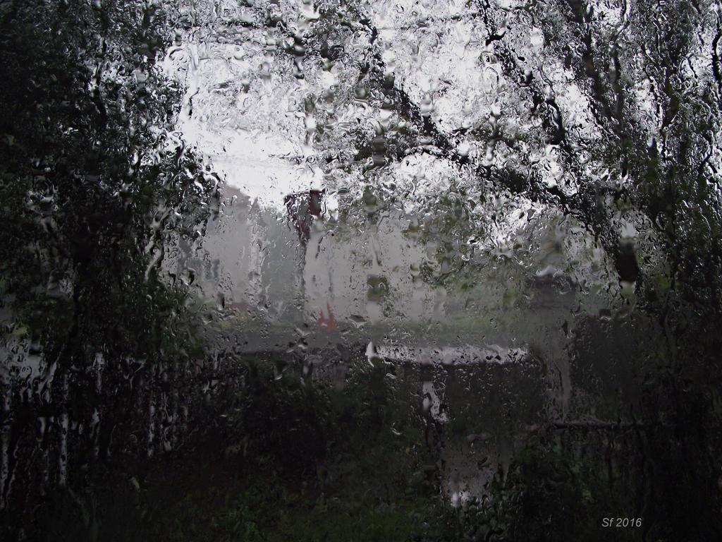 rain outside the window by sonafoitova