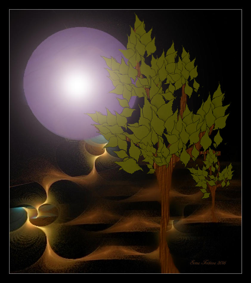 journey to the moon-apo by sonafoitova