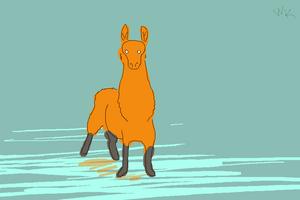 Llama on ice by WhitestKid