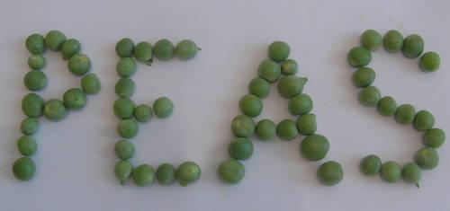 Garden peas by richardnorth