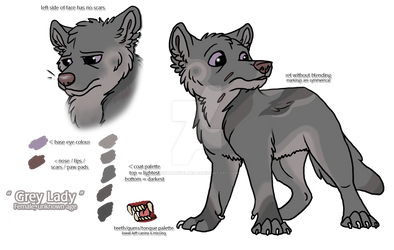 Grey Lady - character ref sheet