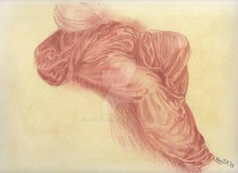 Studio di Leonardo- Parte II