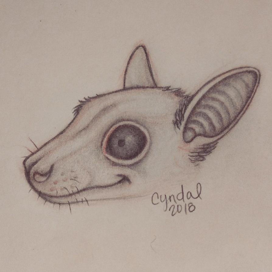 Fruit Bat by CyndalCreates