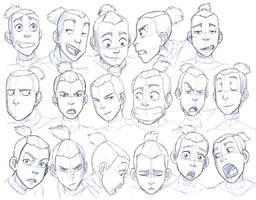 Sokka Expressions Study by Nylak