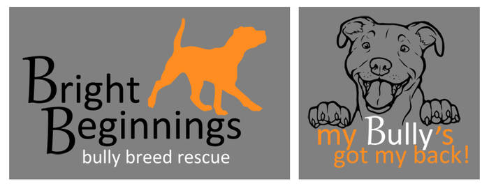 Bright Beginnings Rescue: New Shirts!
