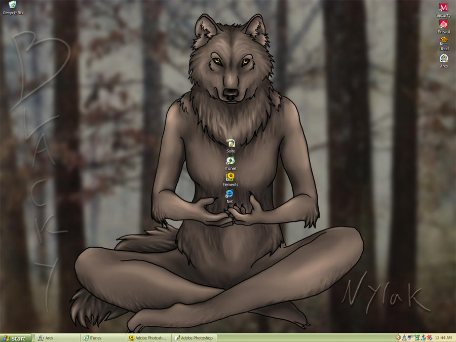 Anthro Wolf Wallpaper Anthro Wolf Desktop by Nylak