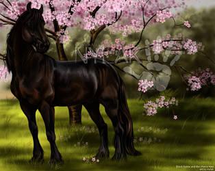 Black Horse + The Cherry Tree by Nylak
