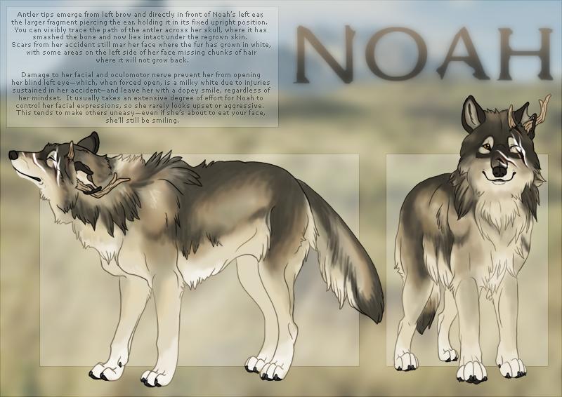 Noah : Ref Sheet by Nylak