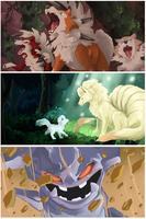Pokemon Practice // Screencaps by Winterfaux